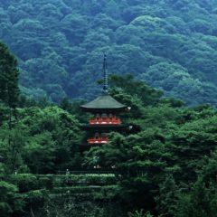 三重塔 お寺