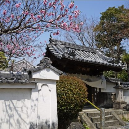 黄檗山緑樹院