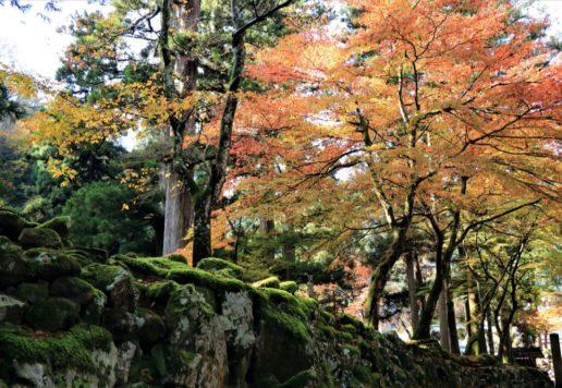 石庭 紅葉